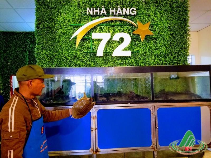 nhà hàng 72 mộc châu (8)