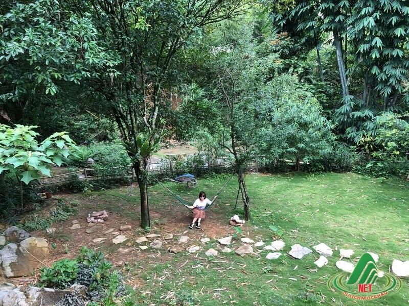 moc chau retreat resort moc chau (11)
