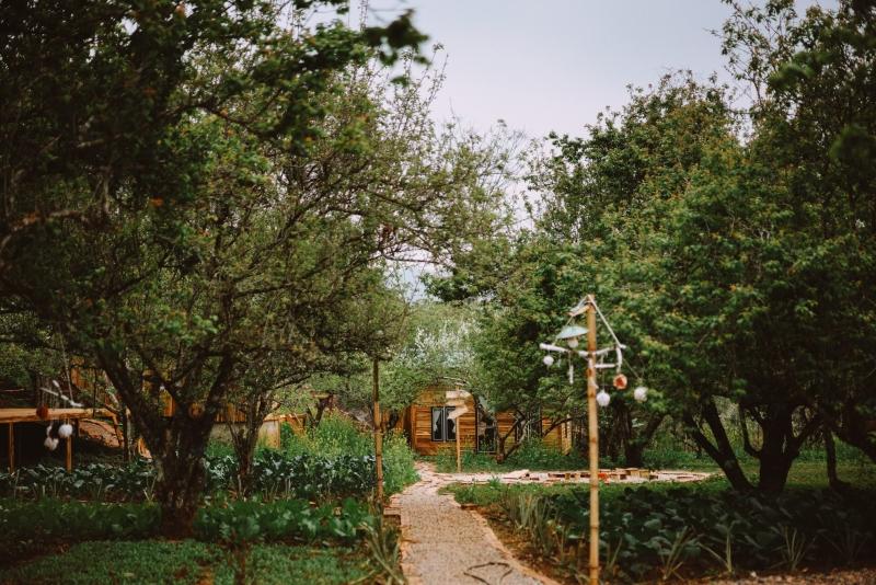 5 địa điểm lưu trú đẹp gần rừng thông bản Áng