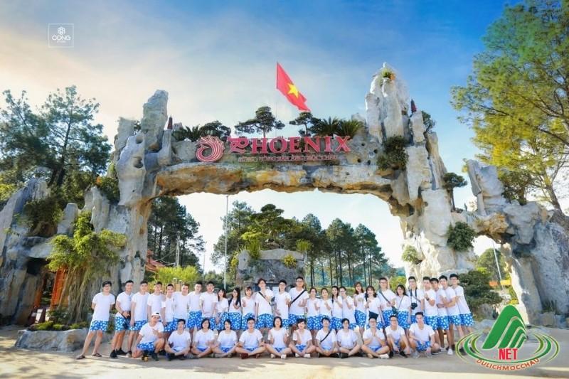 rung thong ban ang moc chau (15)
